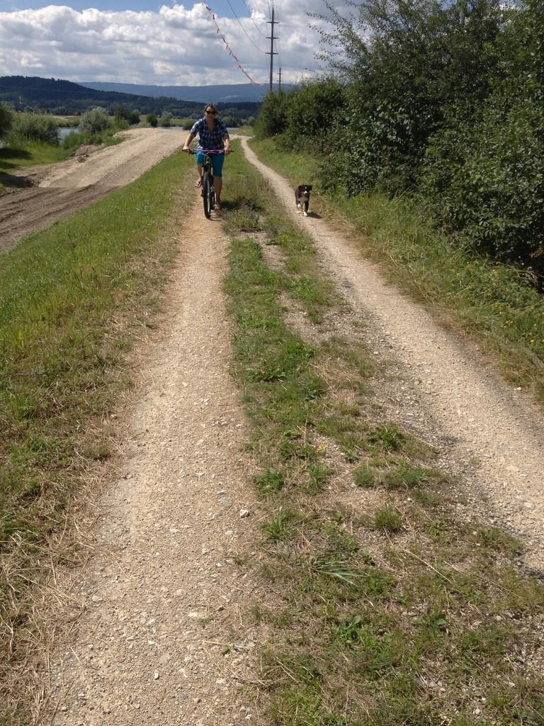 die ersten trainingsminuten mit dem Fahrrad