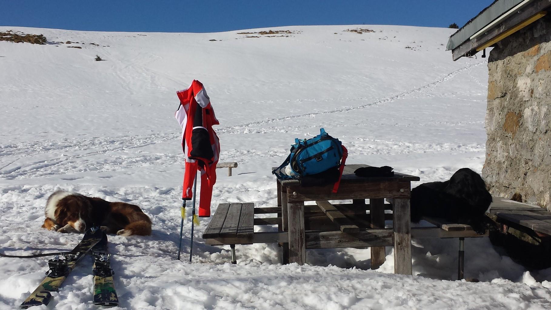 Im Alpstei uf Schitürli  (Siesta)