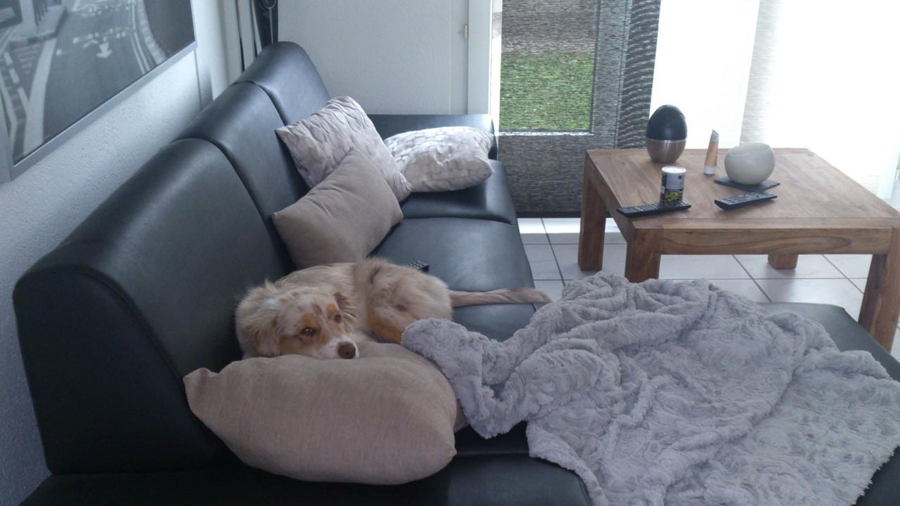 Zu Hause auf dem Sofa hab ich auch schon meinen Platz...