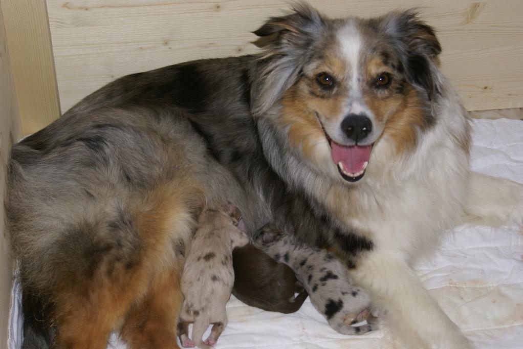 Ein müdes aber glückliches Mami...