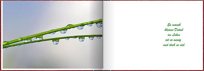 Seite 22 / 23
