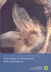 Fledermäuse im Nationalpark Kellerwald-Edersee