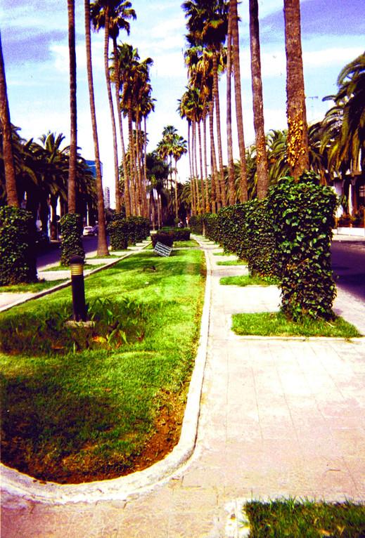 Promenade touristique, Casablanca, Maroc