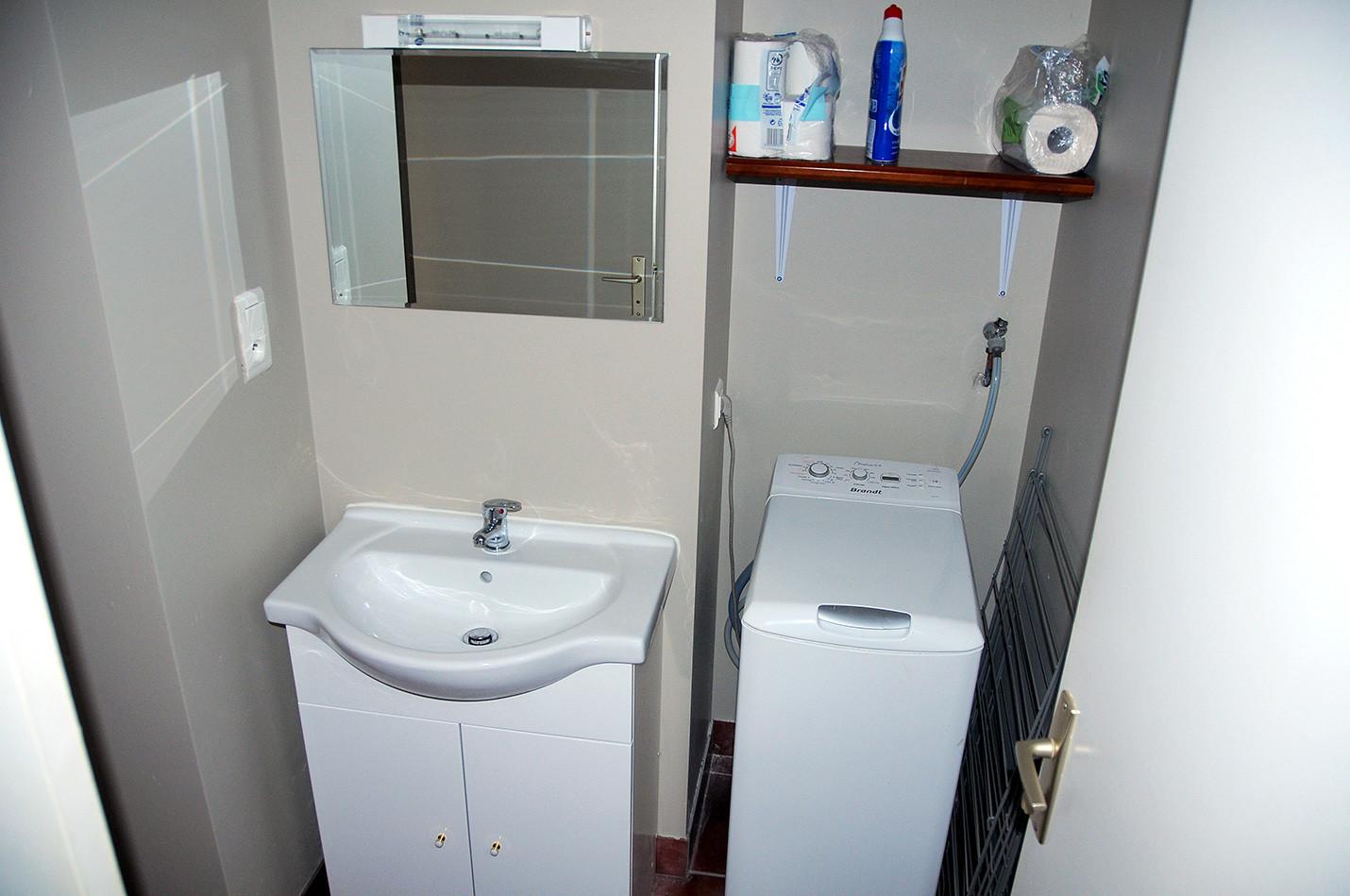 Buanderie avec machine à laver et lavabo