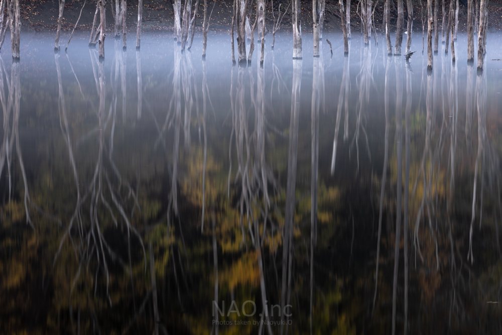 秋の落合ダム。黒い水鏡