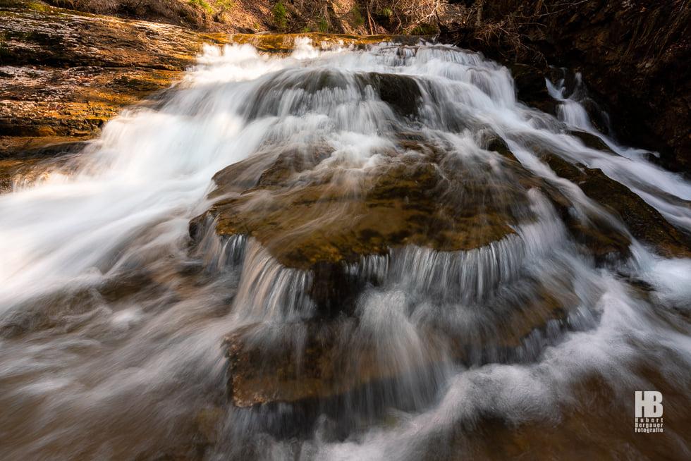 Waldwasserzauberweg
