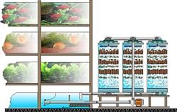 Beispiel biologische Aufbereitung für Händler-Aaquarienanlagen
