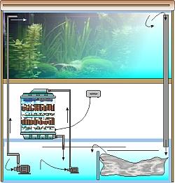 Beispiel Aquarium mit Rieselfilter, biologischer Filter für Aquarienbecken