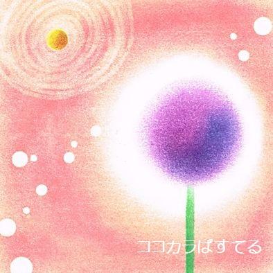 まぁるい花