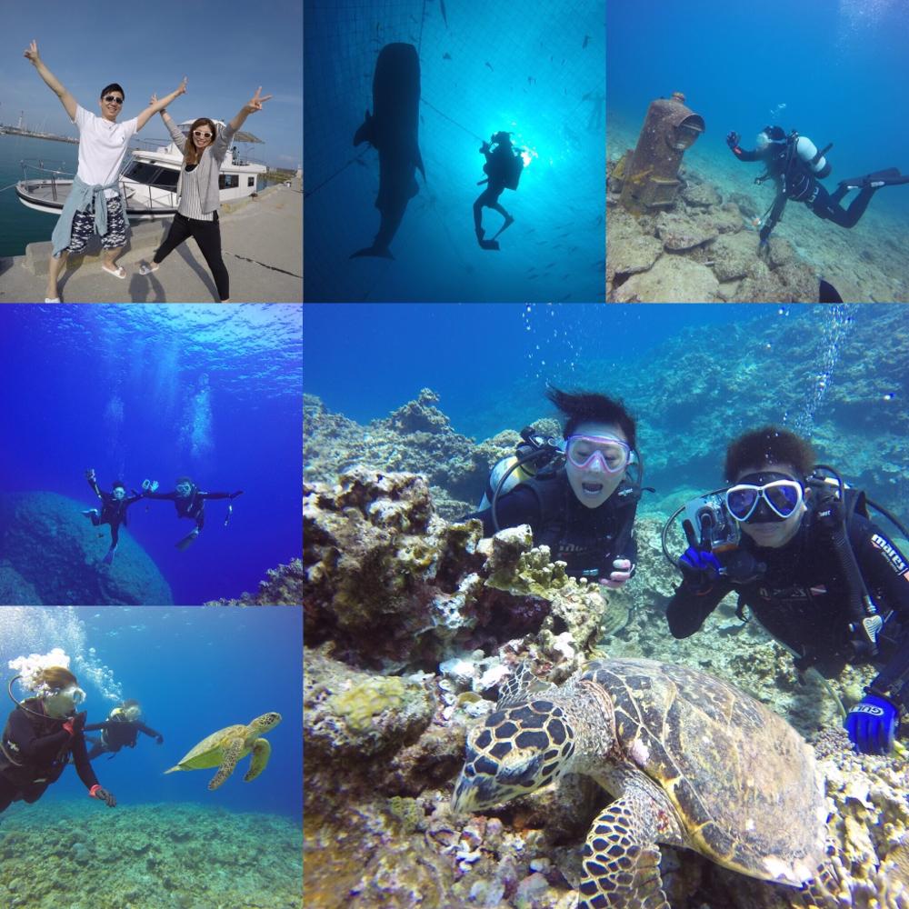 水中世界を思いっきり楽しもう‼️