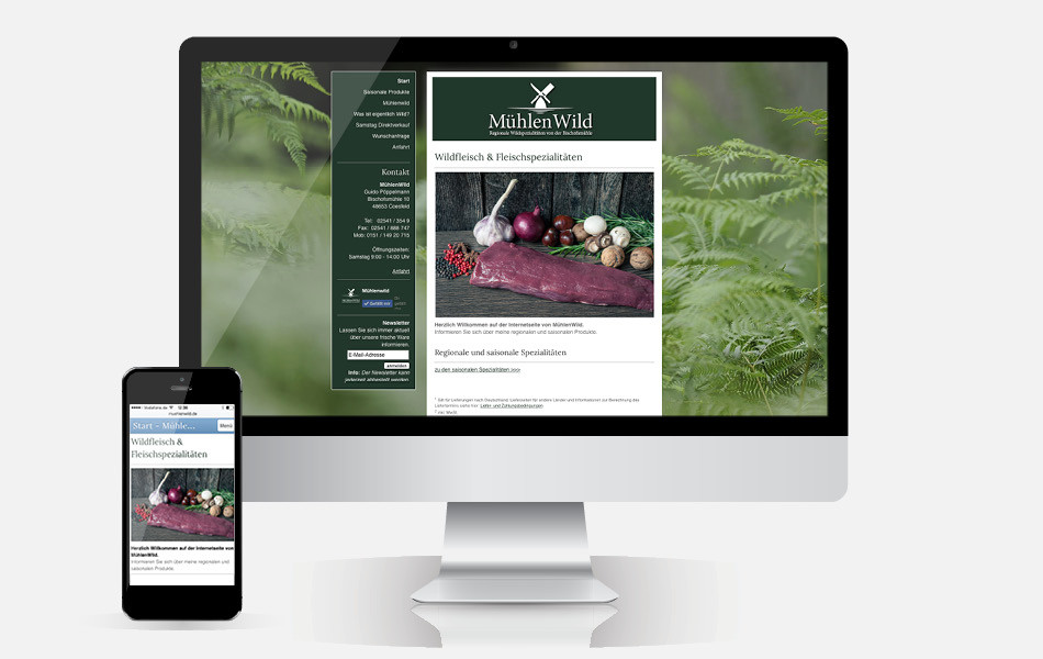 Website mit CMS und Mobilefähigkeit