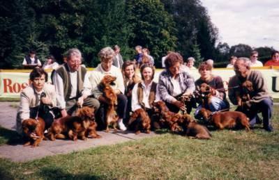 Zuchtschau: Treffen der Nachkommen von Debby in Ockstadt