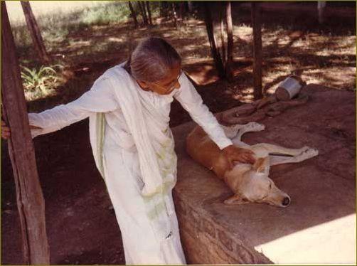 Mansari Desai