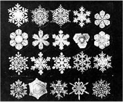 Wilson's Bentley's beautiful snowflakes
