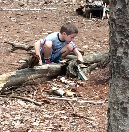 Mackworth Island:  Making a Fairy House