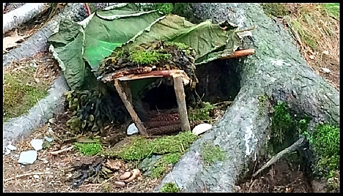 A Leaf-Roofed Fairy House