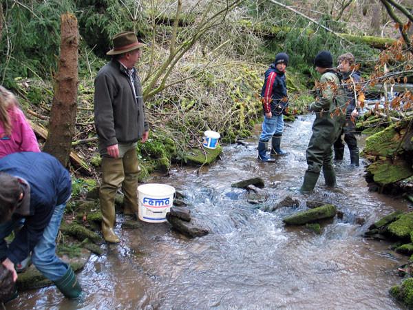 Jugend bei biologischer Wasserüberprüfung im Stadelbach