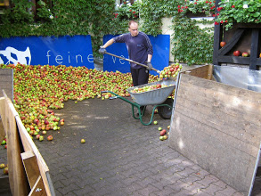August 2014 bei Sigurd Haarstarks Suchspiel im Stadtwald. Apfelverarbeitung in der Buchscheer.