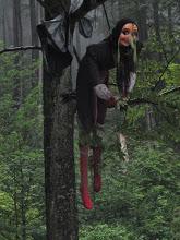 Juli 2014, notgelandete Hexe an der Hexenruh bei Oberweißenbrunn