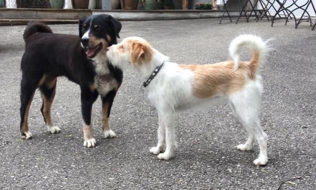 Schmuserunde mit ihrem Freund