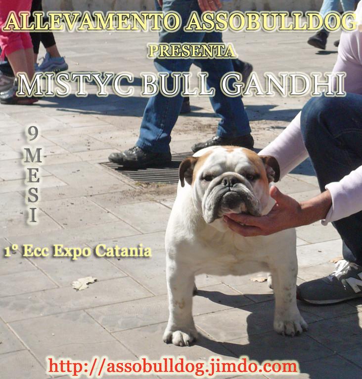 Gandhi vince la sua prima gara a Catania.