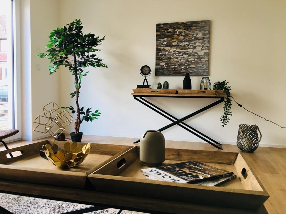 NICE Homestaging - Ausstattung Musterwohnung in Sanierungs-/ Neubau-Objekten