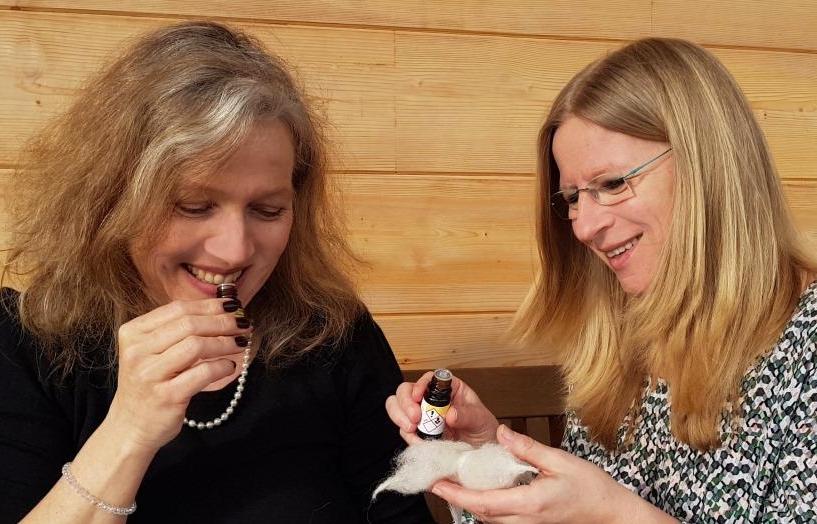 aromatherapie für kinder fachbuch von eliane zimmermann und sabrina herber