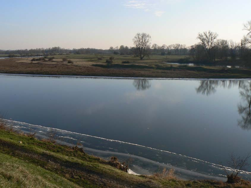 La Loire et ses berges gelées