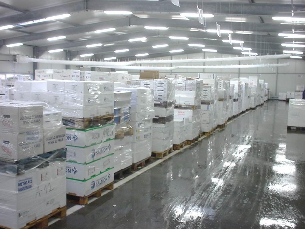 1995 - Aufbau einer internationalen Fischdistribution für eine deutsche Cash & Carry-Kette