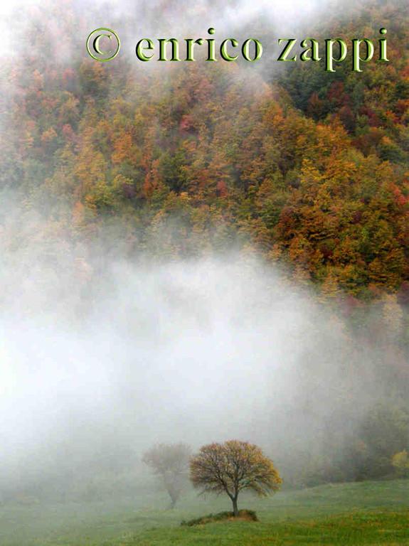 La nebbia sale fra le pendici dei monti di San Benedetto