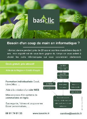 Flyer Basiclic Informatique