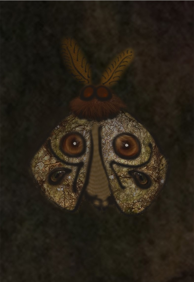 Moth of Eyes and Stones