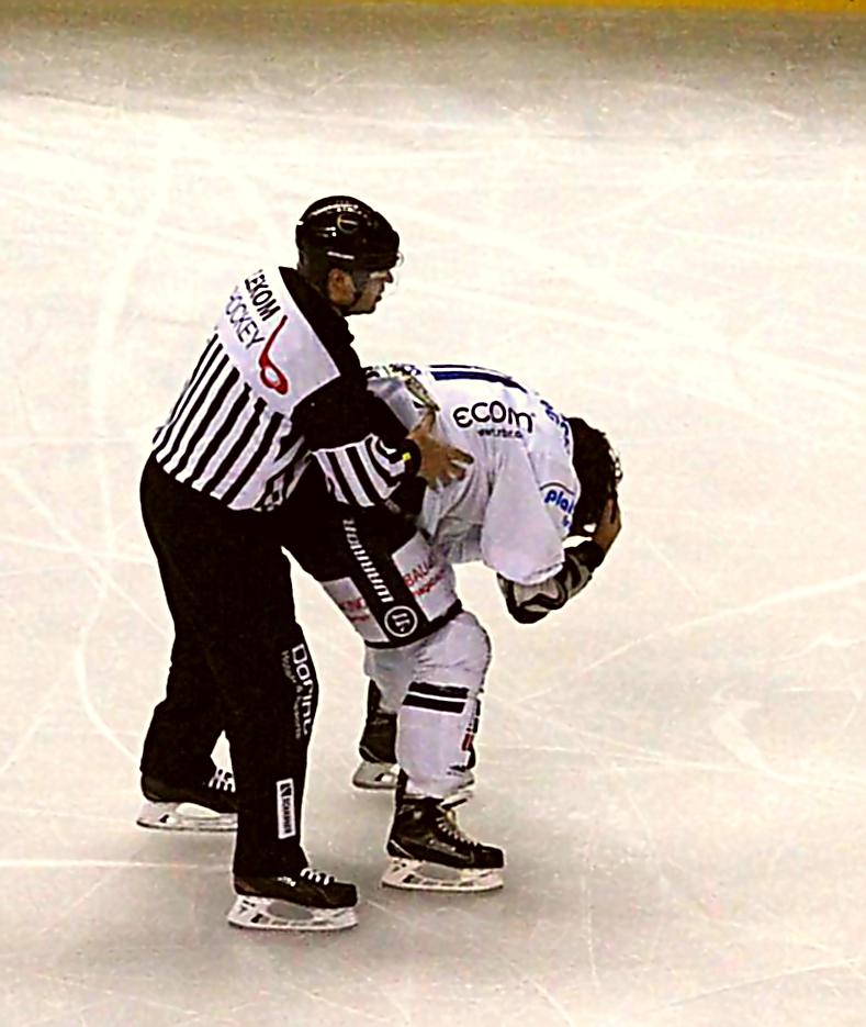 Spieldauer Strafe für Iserlohns Bradley Ross Foto: Stefan Wenske
