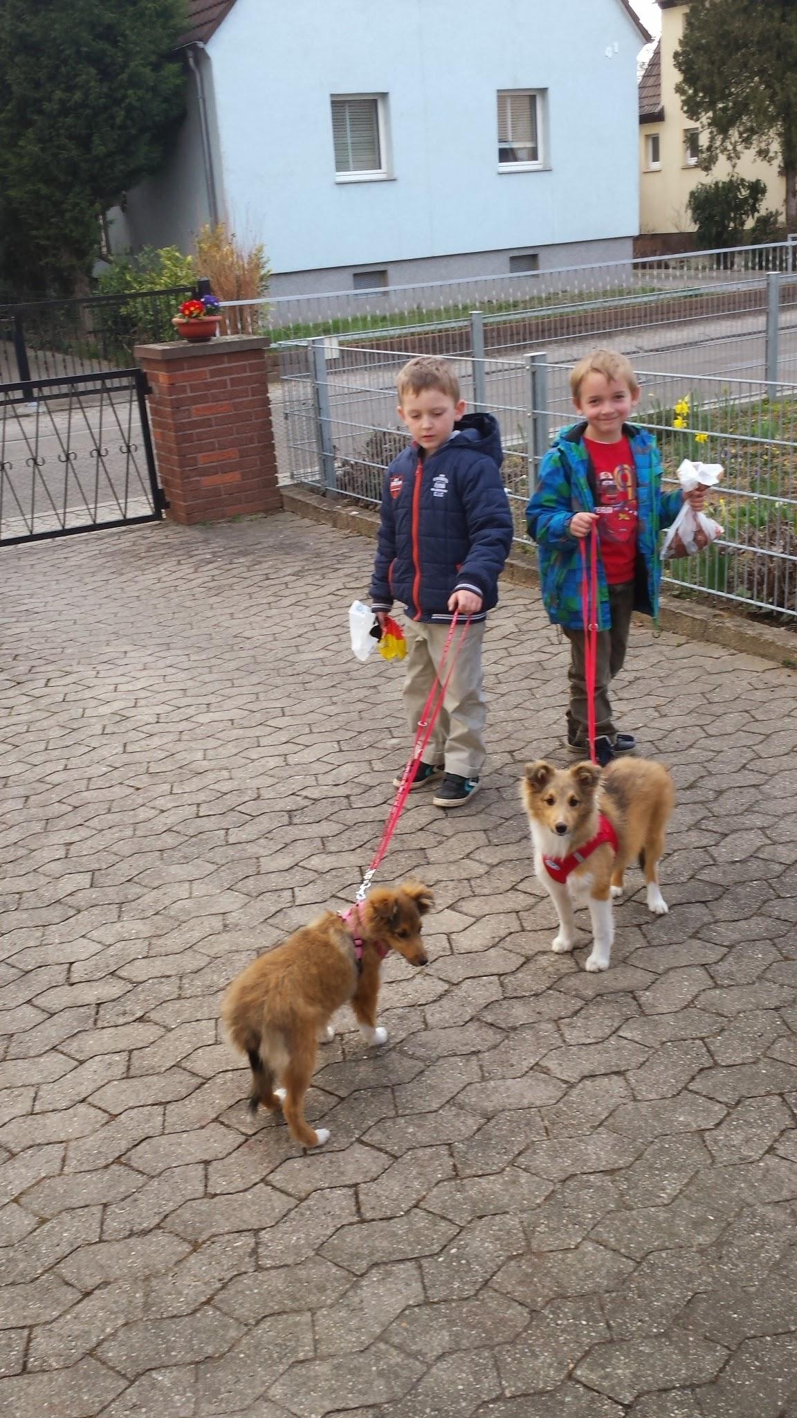 Spaziergang mit Enkelchen und Freund.🐶🐶