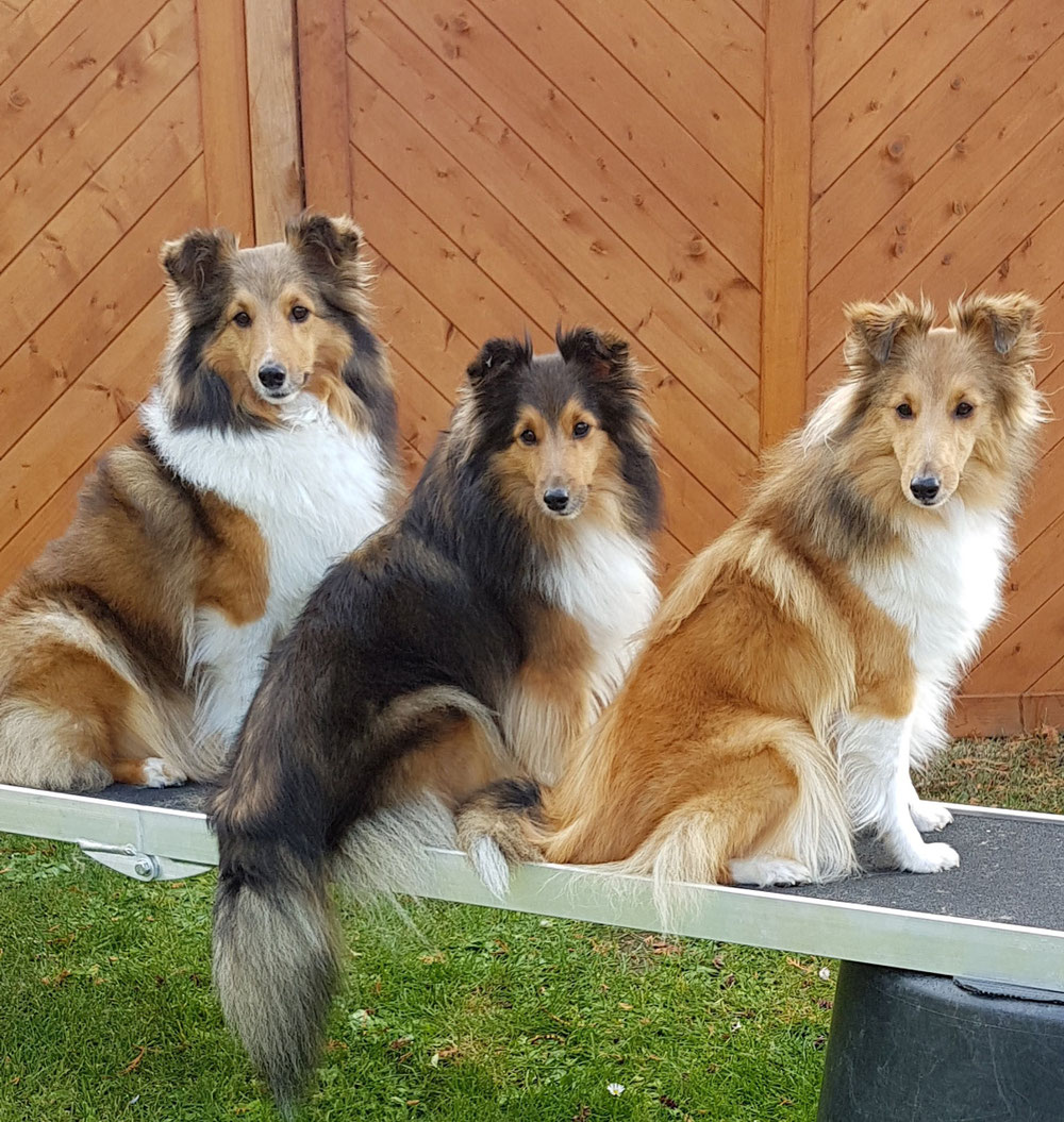 Bakira, Emely und Bonnie