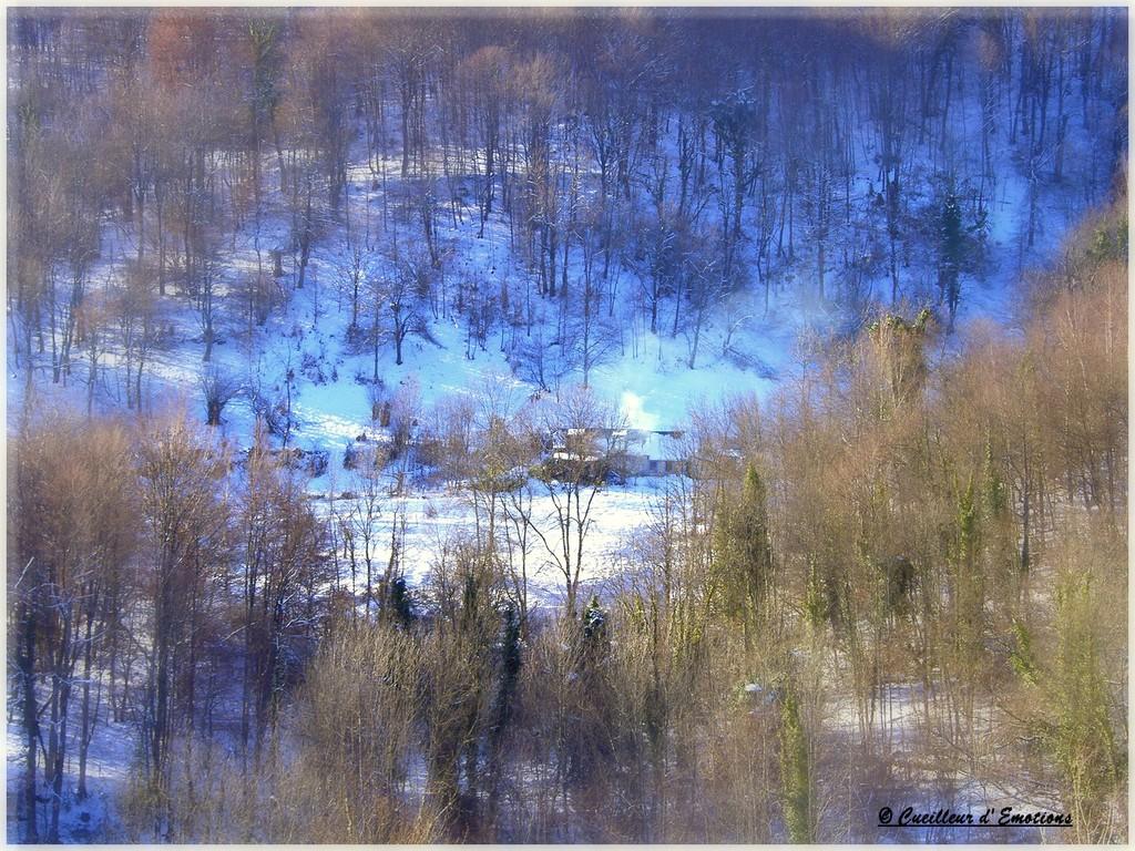neige massat 2009