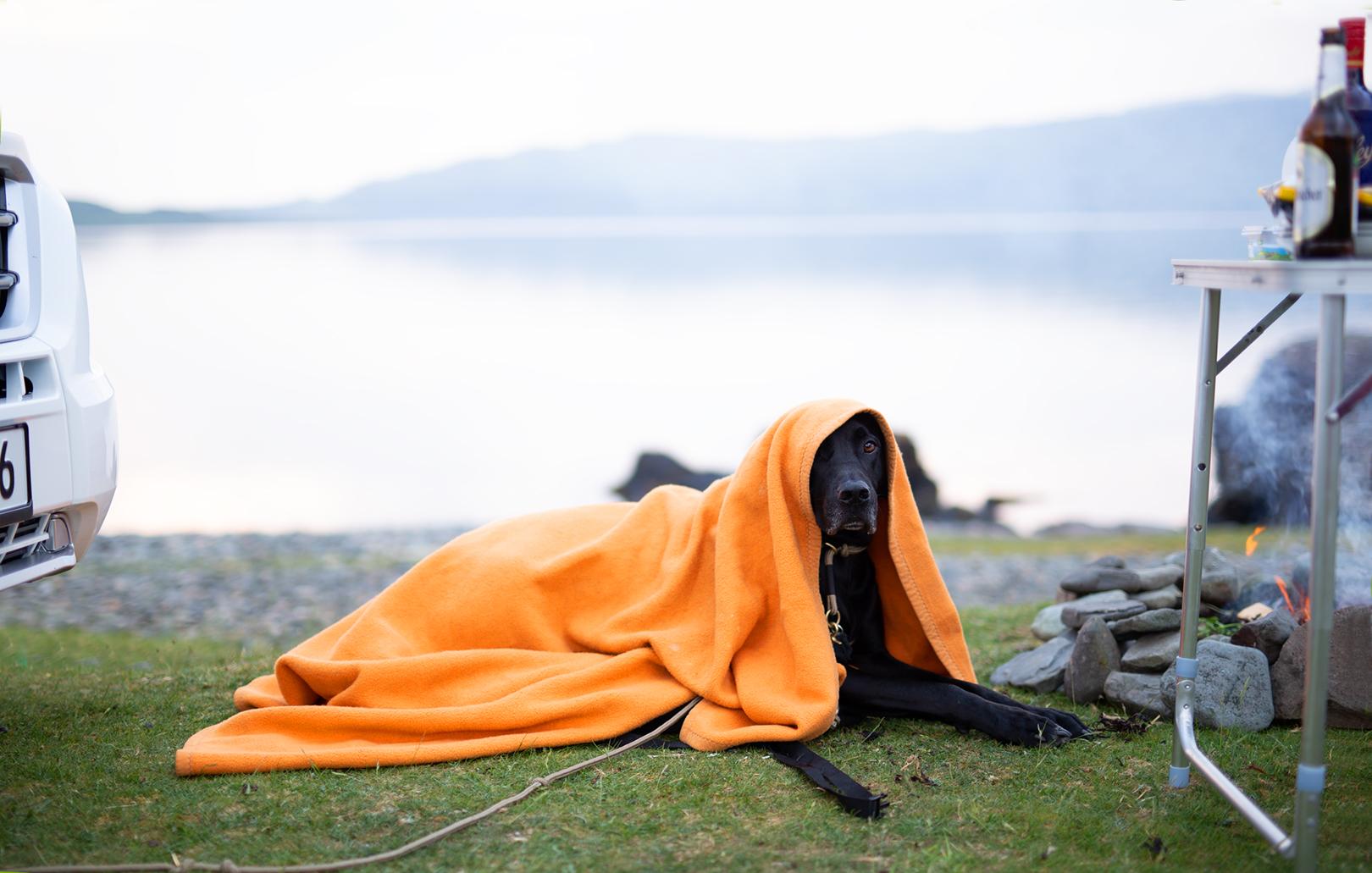 Reisen mit Hund_Wohnmobil_Campen_Schottland
