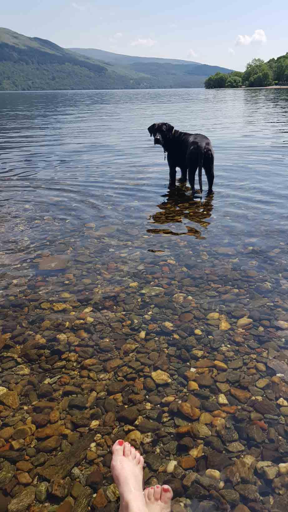 Loch Lomond_Schottland_Campen_Wohnmobil_Hund