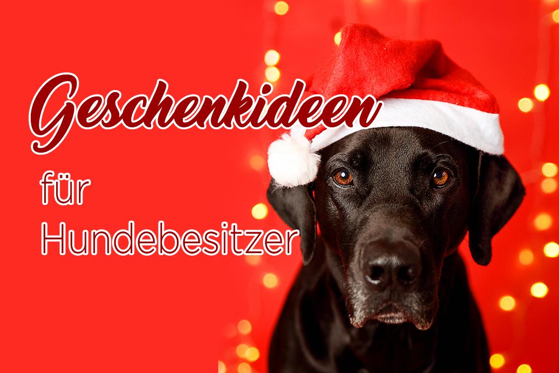 Geschenkideen für Hundebesitzer_Weihnachtsbeschenk_Geburtstagsgeschenk