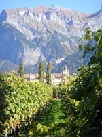 Waisenhaus-Wingert in Chur