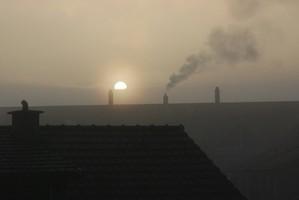 01. März 2012 -  Nebelstimmung