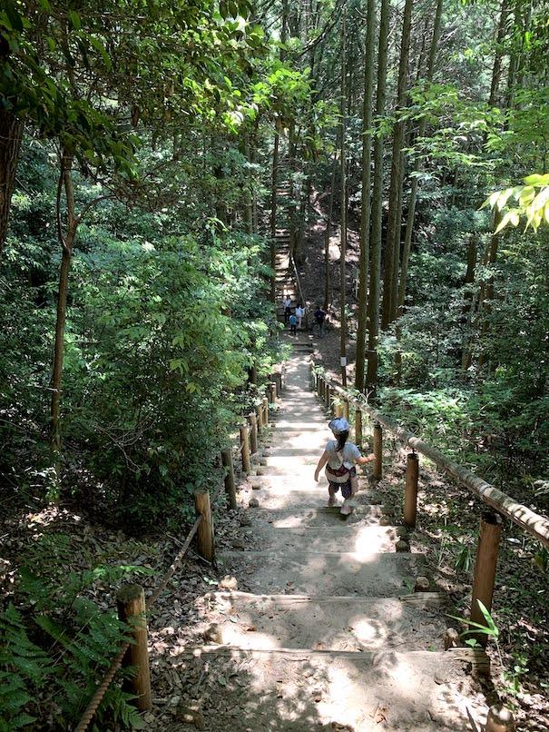 4歳の娘も一人で降りられる東谷山の登山道