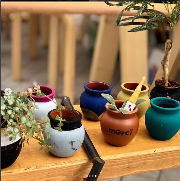 神戸フランツさんの壷プリンの壷に多肉植物を植えます!