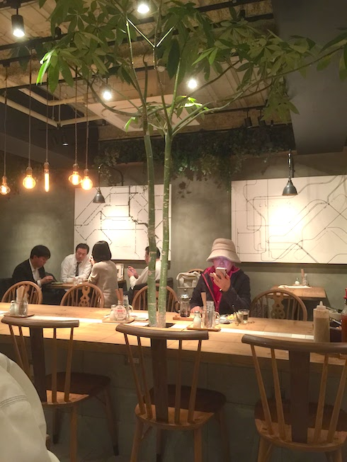 観葉植物のパキラがテーブルの中から生えている。これは大きいパキラですね。