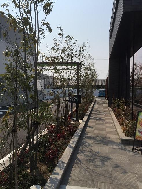こうして直線で見てみると、およそ3,5mくらいの高さの植木が続いているように見える。
