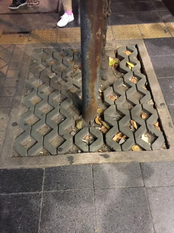街路樹の足元がコンクリートブロック製品で埋められていた