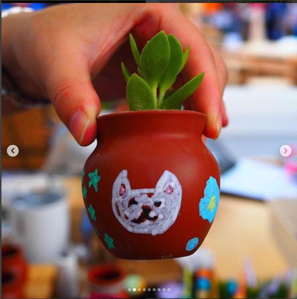 名古屋国際学園さんのバザーで可愛い壷に多肉植物を寄せ植えして頂けます!
