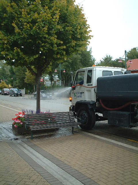 こちらはニュージーランドで見た街路樹にお水をやる作業中の車。ワイルドですねえ!