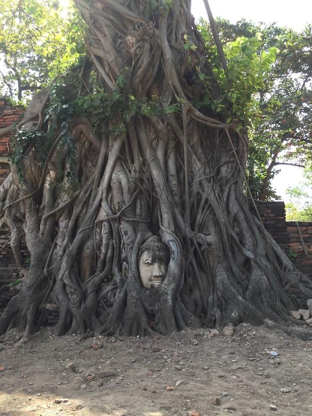 この仏像の写真はとても有名だと思います。これには悲しい歴史が・・・