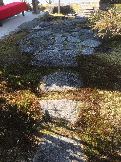 飛び石の間にはスギコゲが。